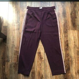 Aritzia Babaton Conan Pants